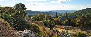 La-vue-depuis-le-village_carouselOriginal