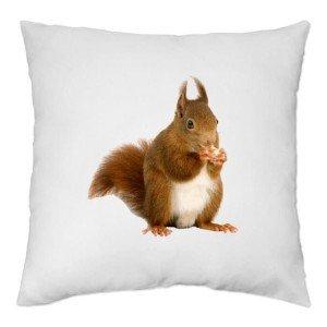housse-de-coussin-ecureuil
