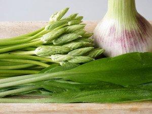 asperges-des-bois-sautees-0